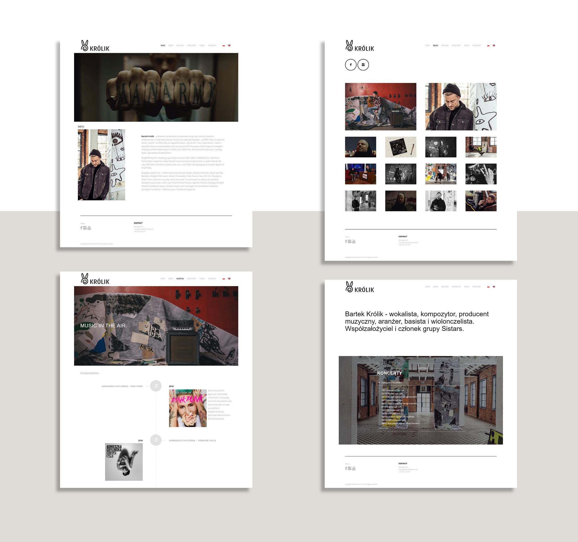 Bartek Królik - strona, wizualizacja